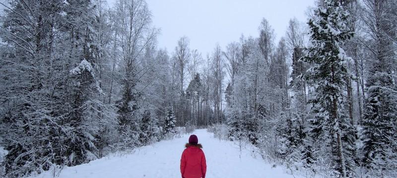 Sereni anche lontani da casa: il localizzatore gps che dovreste trovare sotto l'albero di Natale